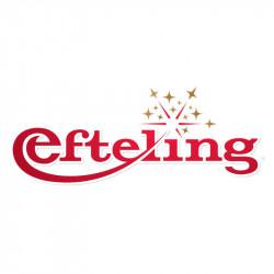 Ticket parc Efteling